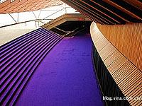悉尼歌剧院的一抹紫色