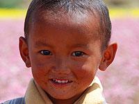 西藏:日喀则花海中孩子的笑脸