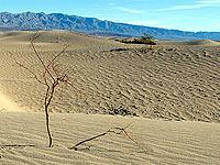 美国死亡谷里的沙漠风情