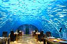 马尔代夫海下餐厅