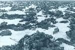 二战时最惨烈的苏德战争