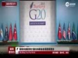 摄像机捕捉到几只大猫G20峰会会场悠闲漫步