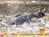 司机超车撞伤行人 怕花钱将其弃荒野致死