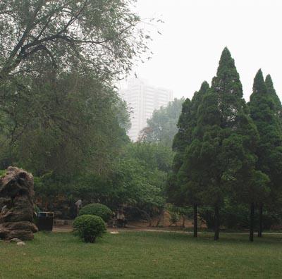 洛阳市牡丹公园