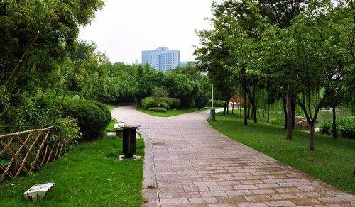 虹桥花园全景
