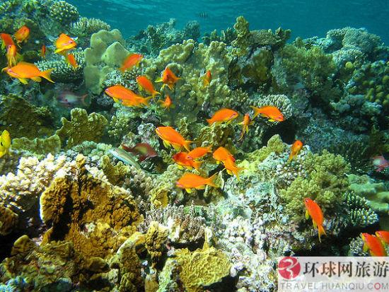 图巴塔哈群礁