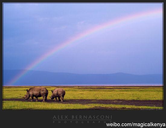 纳库鲁湖国家公园