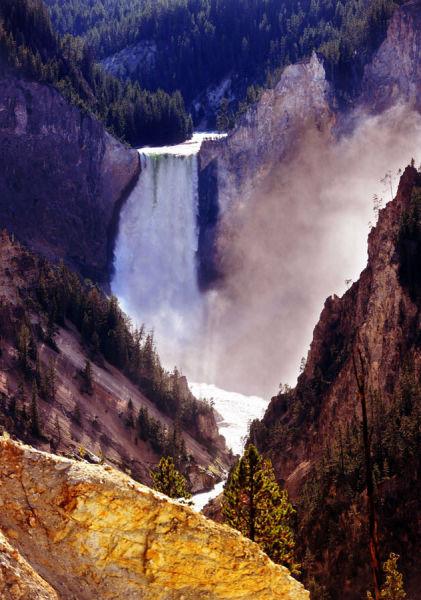 美国黄石国家公园的大峡谷和瀑布(8月10日摄)。