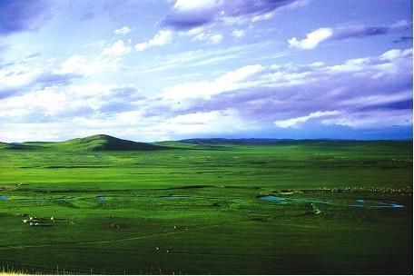 美丽的西乌珠穆沁草原