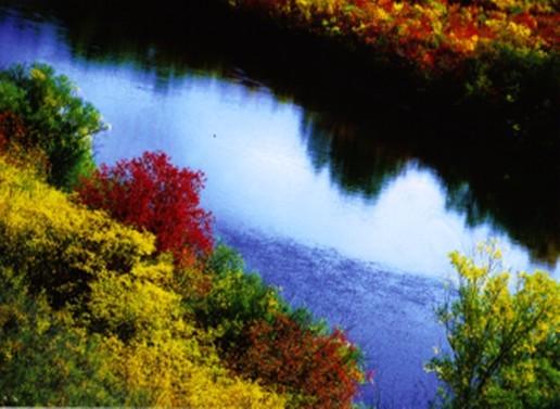 五彩斑斓的国家级自然保护区古若斯台山