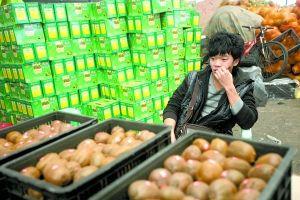 菜园坝水果市场,很少有人购买秀山产的猕猴桃。重庆晨报记者 许恢毅 摄