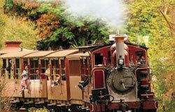 乘坐普芬比利蒸汽小火车,勇敢者可以把腿伸出火车窗外。