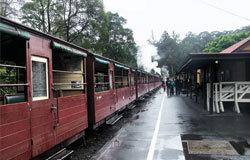 普芬比利火车在600多名义工辛勤努力下,每天都会运营,圣诞节期间还有盛大的活动。