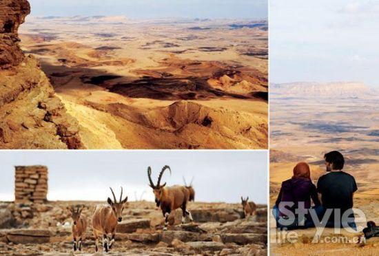 以色列内盖夫沙漠