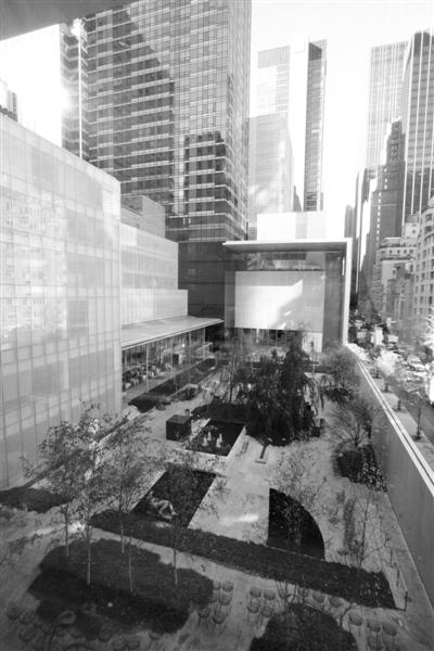 纽约当代美术馆(MOMA)。