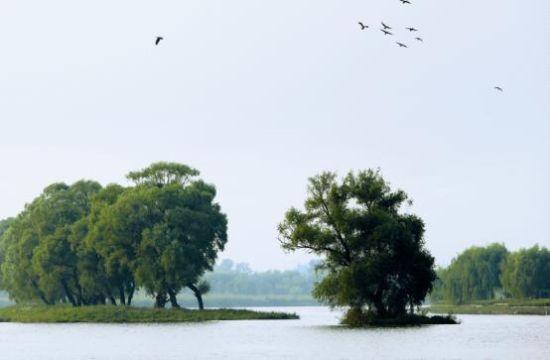 """通州致力打造以""""城中湿地""""为特色的水绿交融的新城园林游憩区"""