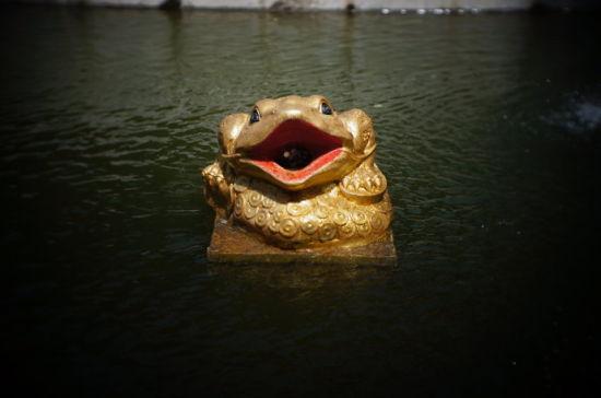 传说中,将硬币投入至蛤蟆的嘴里,你就会发财,不知道是真还是假。