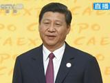 中国国家副主席习近平