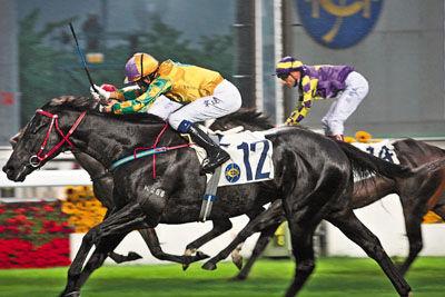 香港赛马会每周举办两场比赛,周三晚在跑马地马场举行,周日则在沙田马场举行。
