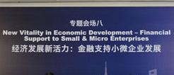 """""""经济发展新活力:金融支持小微企业发展"""