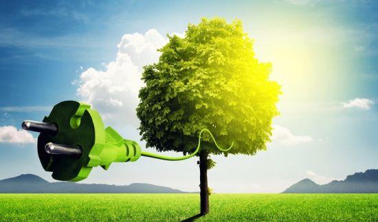 备受期待的绿色能源