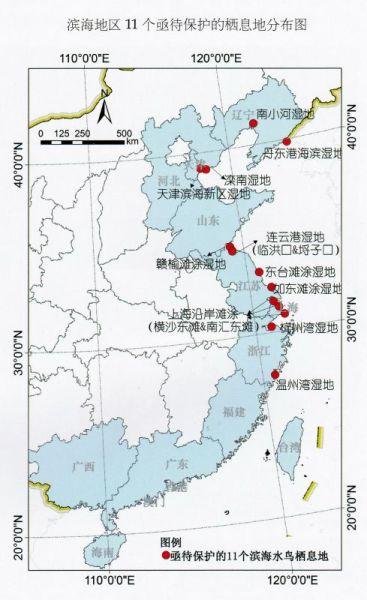 中國濱海地區11個亟待保護的棲息地分佈圖。資料來源:中國濱海濕地保護管理戰略研究項目組
