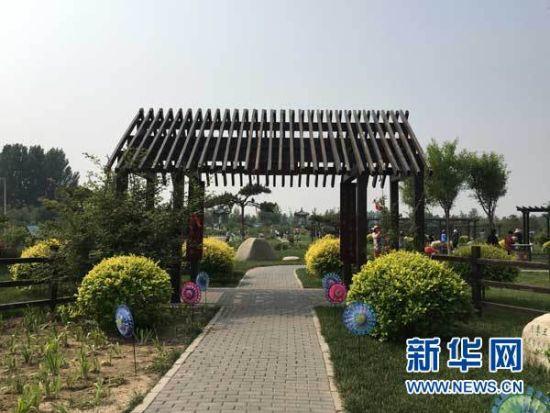 中国古老月季文化园内风景。新华网 王萍 摄