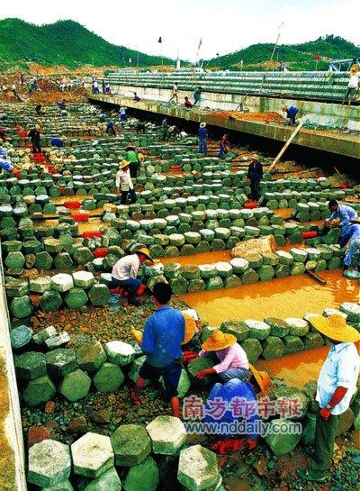 1983年 新生力量让深圳梦加速(图)