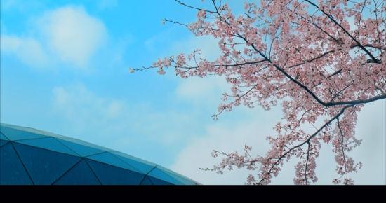 靖江滨江新城十周年微电影《心城》