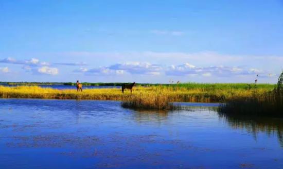 新疆巴楚:七夕和我在红海的漫滩上走一走