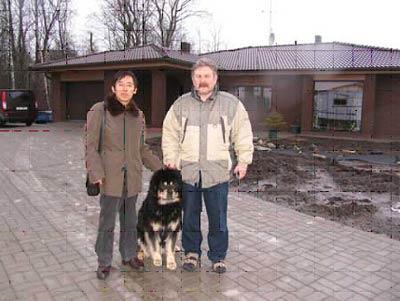 山西龙城藏獒养殖基地打通藏獒走向世界之路