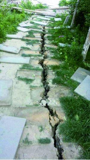 便道和水泥路面也开裂。