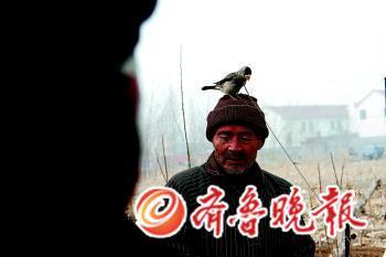 大集上少不了人气,一位摊主带着自己饲养的鸟儿叫卖。