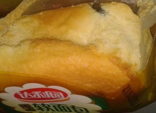 吃出苍蝇的达利园软面包(图片由闫先生提供)