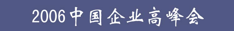 2006中国企业高峰会