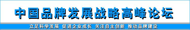 中国品牌发展战略高峰论坛