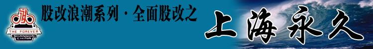 股改浪潮系列全面股改之上海永久