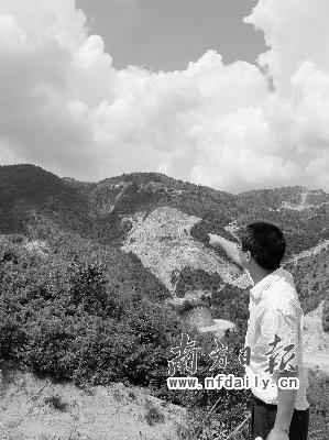 广东林地江西发证 跨越省界林权归属亟待解决