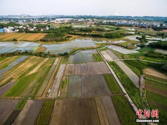 中国落地最严耕地保护制度 省长为第一责任人