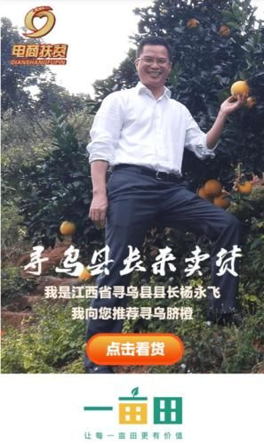 """县长在一亩田代言 助寻乌脐橙成""""网红"""""""