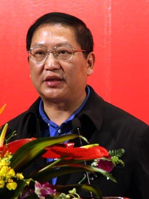 图文:国家税务总局法规司副司长从明发言