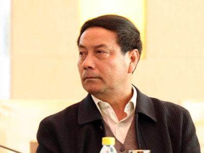 图文:中央财经领导小组办公室副主任陈锡文
