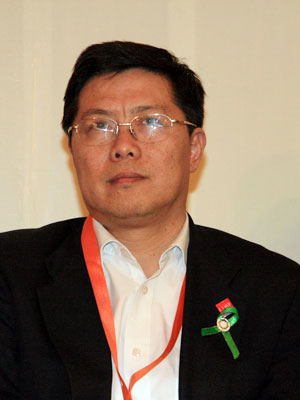图文:中国发展研究基金会副秘书长汤敏