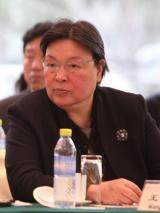 国家开发银行教育培训局局长王沅