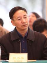 北师大经济学院金融系教授贺力平