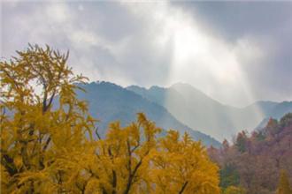 """""""游""""在五岳之首泰山醉美秋色里"""