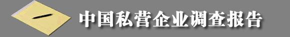 中国私营企业调查报告
