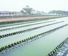 张家口:一座水厂的10年搏斗