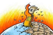 多国灾害致国际粮价上涨