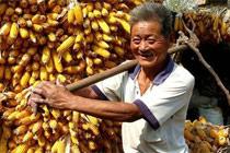 国务院要求减轻农民负担